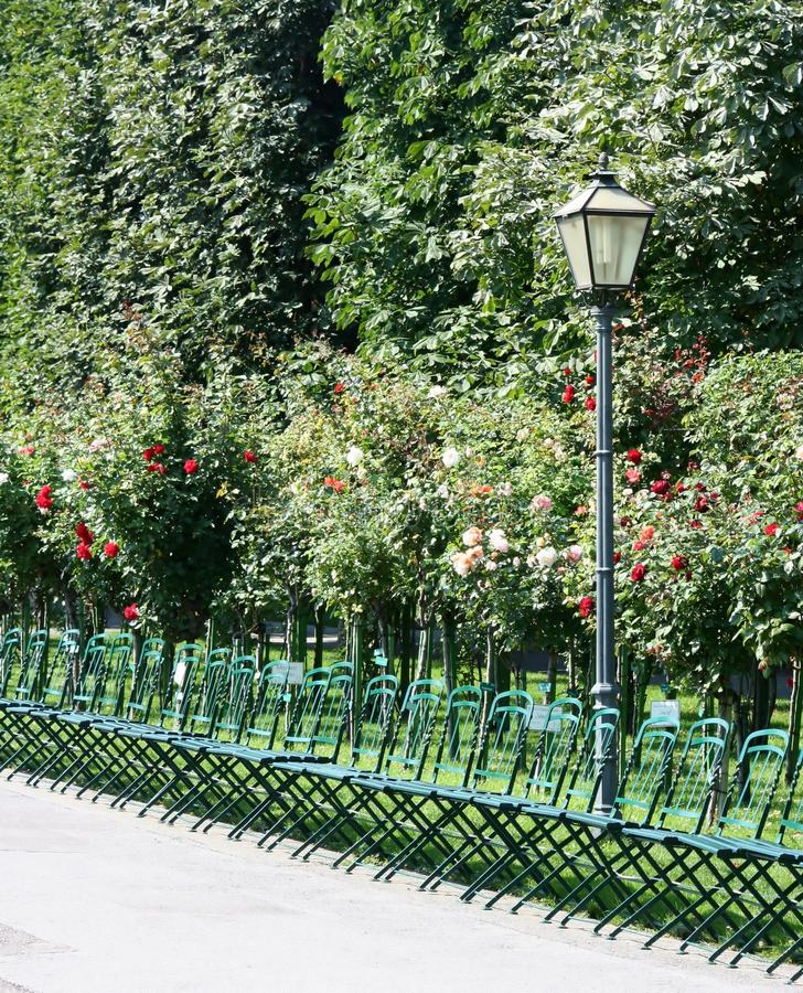 Download Chairs and roses stock photo. Image of chairs, flower - 20840022