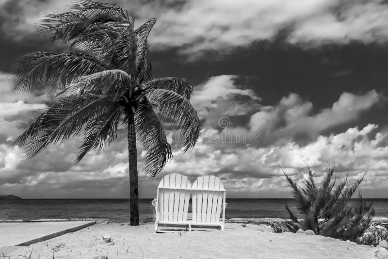 Chaise de plage en bois sur la plage blanche de sable sous l'arbre de noix de coco photographie stock
