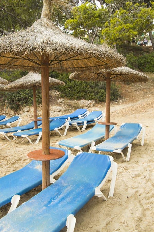 Chaise Lounges och sugrörparaplyer på den härliga sandiga stranden av Palma de Mallorca fotografering för bildbyråer