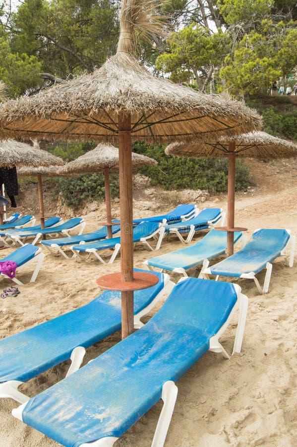 Chaise Lounges och sugrörparaplyer på den härliga sandiga stranden av Palma de Mallorca royaltyfri bild