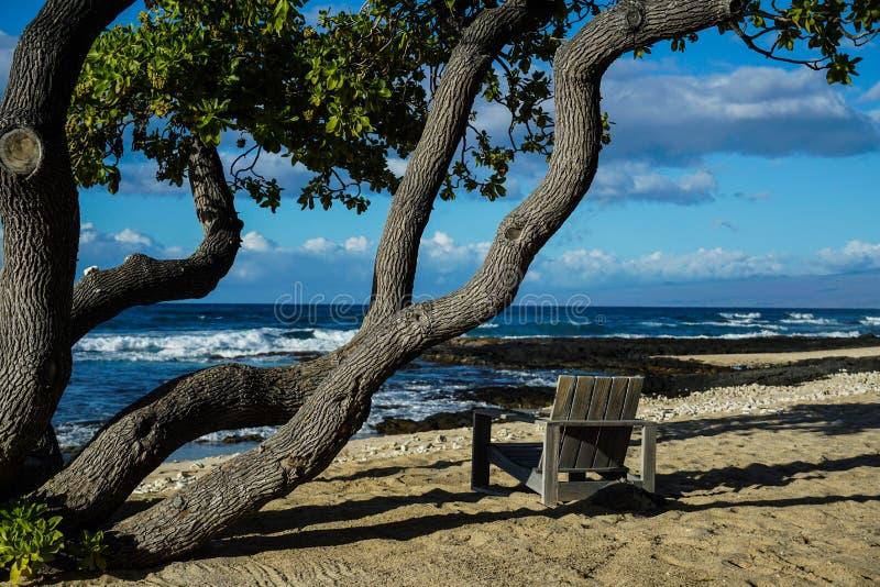 Chaise sur la plage de sable sous un arbre image stock