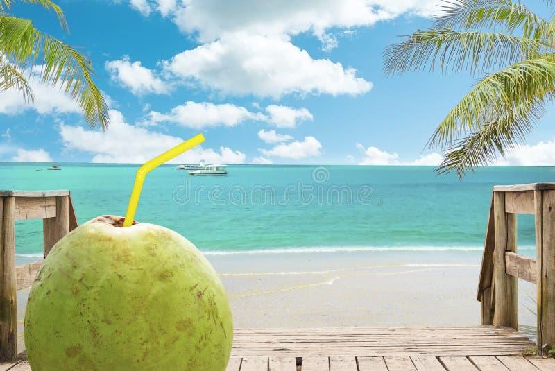 Chaise zitkamer, kokosnoot en paraplu op tropisch strand royalty-vrije stock afbeelding