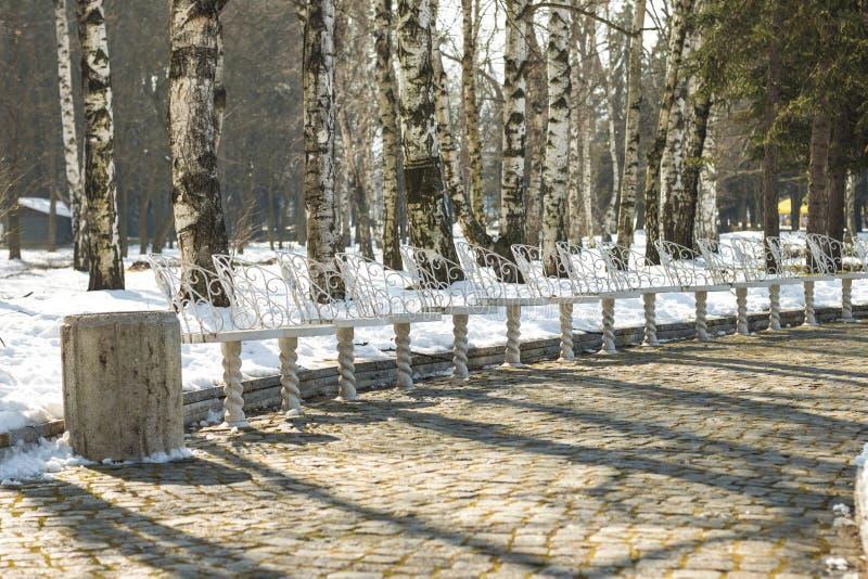 Chaises blanches en parc images stock
