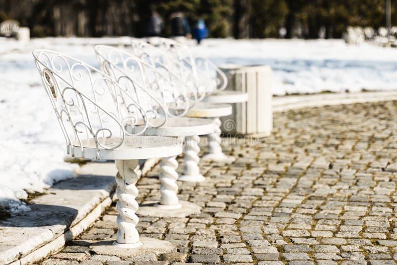 Chaises blanches en parc image stock