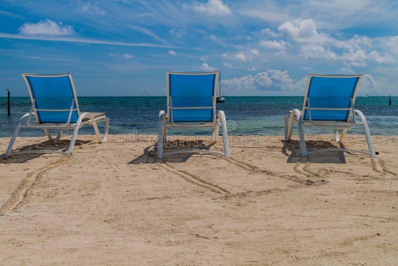Chaises longues à une plage à l'île de matoir de Caye, Beli images stock