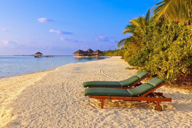 Chaises sur la plage des Maldives photographie stock libre de droits