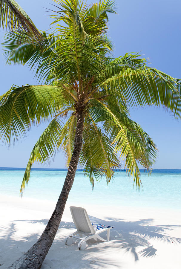 Chaisevardagsrum på en strand. Landskap i en solig dag royaltyfria bilder