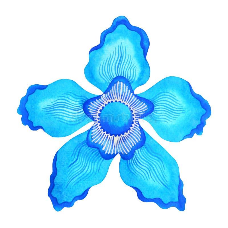 chakra标志喉头概念的蓝色颜色,开花花卉 向量例证
