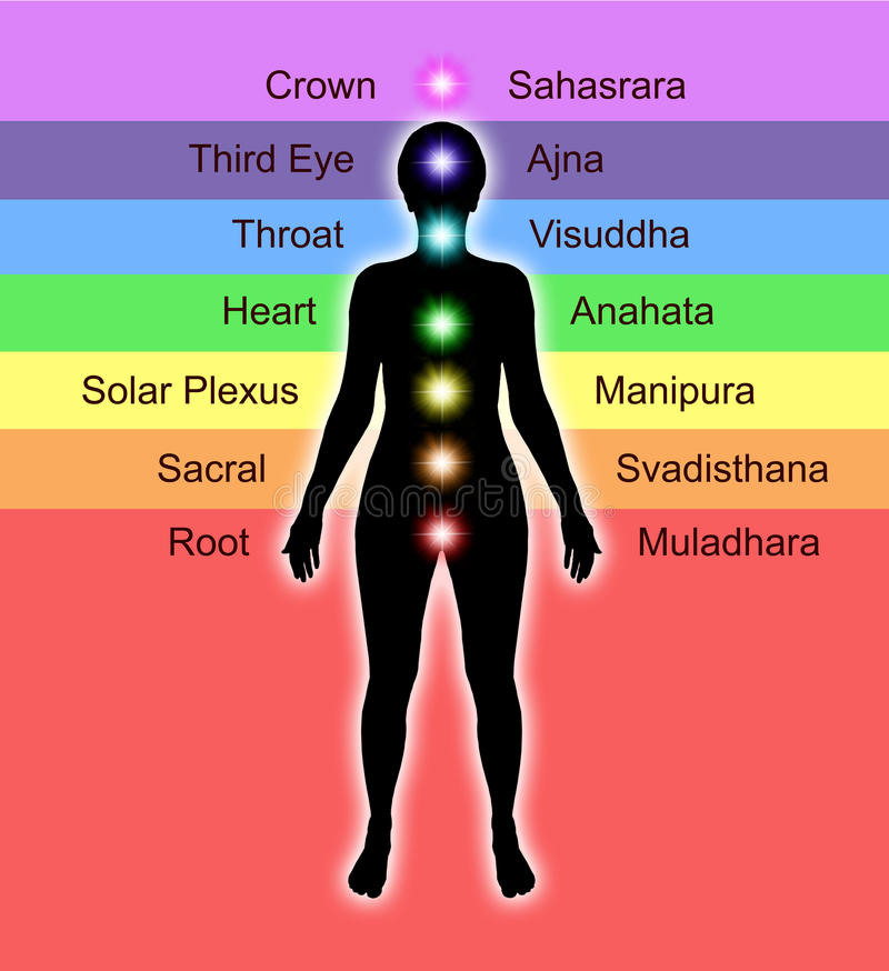Chakra Diagram. Simple diagram showing position of human chakras and their accepted names and colors stock illustration
