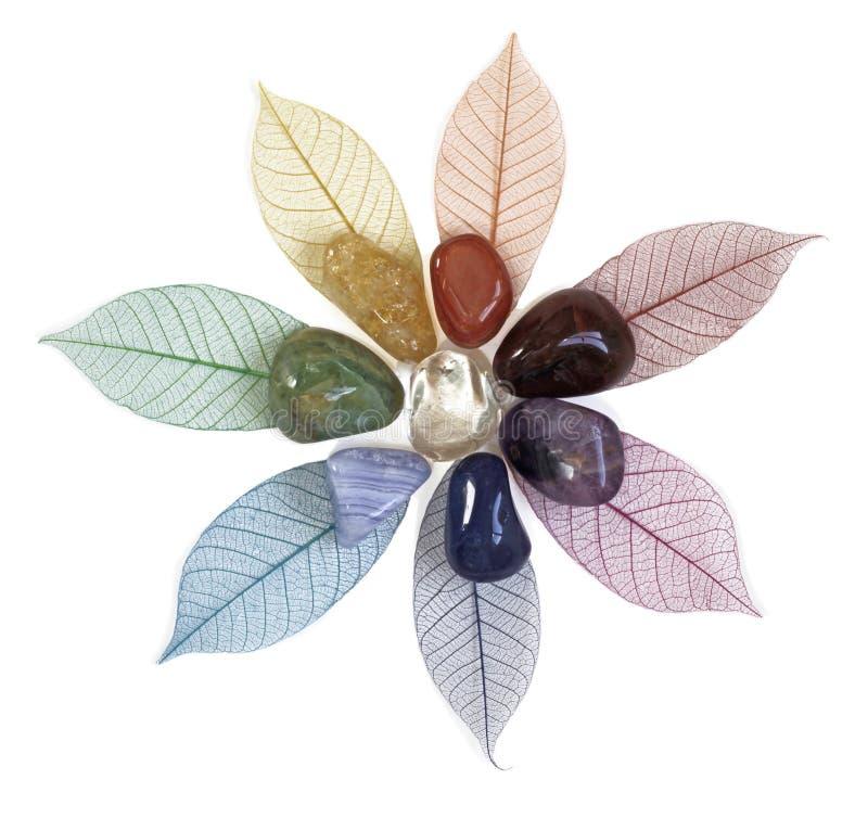 Chakrakristallen op bladeren stock foto's