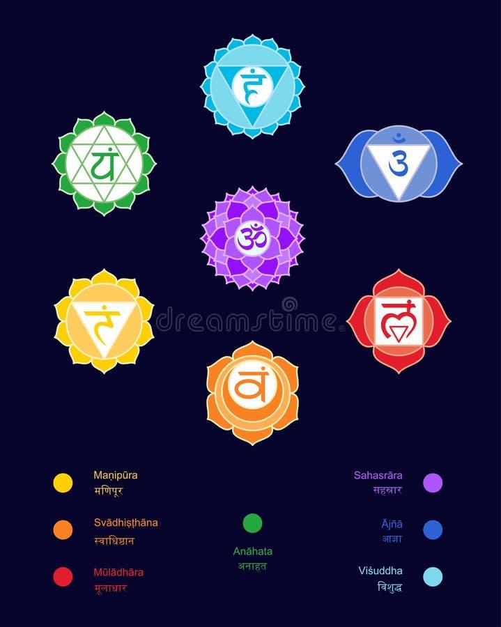 Chakras设置了:muladhara, swadhisthana, manipura, anahata, vishuddha, ajna, sahasrara 传染媒介线标志 om签字 可能 皇族释放例证