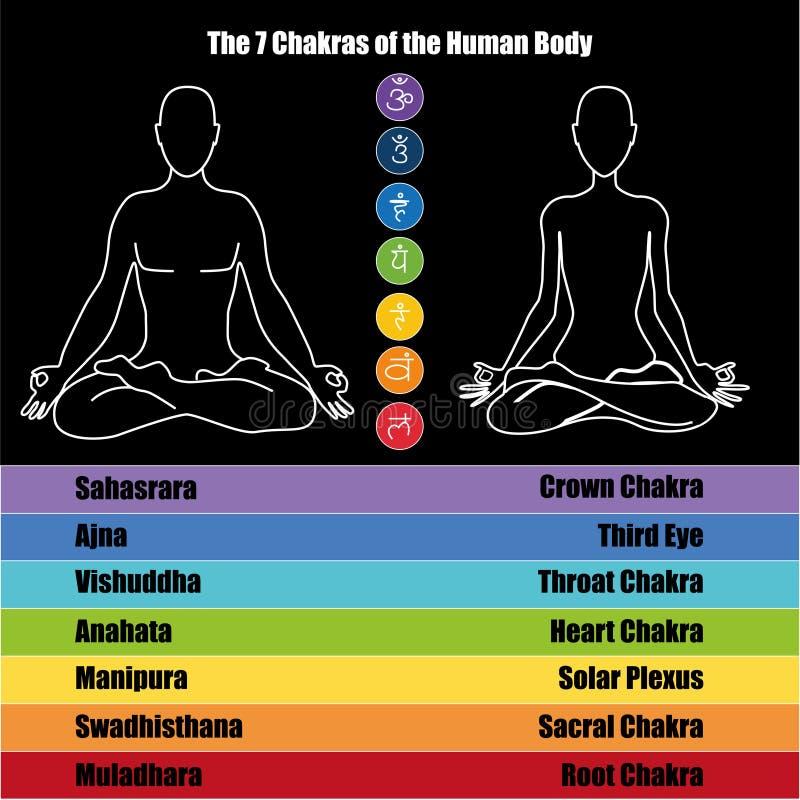 7 chakras libre illustration