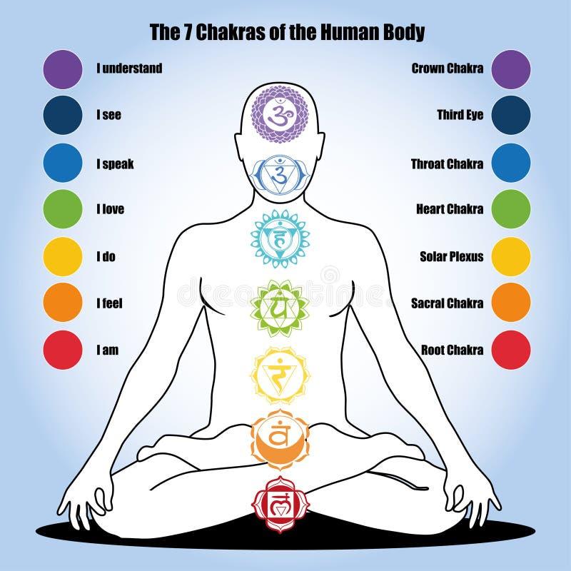 7 chakras av människokroppen vektor illustrationer