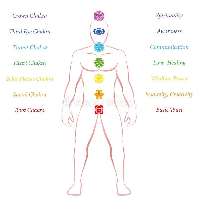 Chakras betydelseman som upprätt står frontalen vektor illustrationer