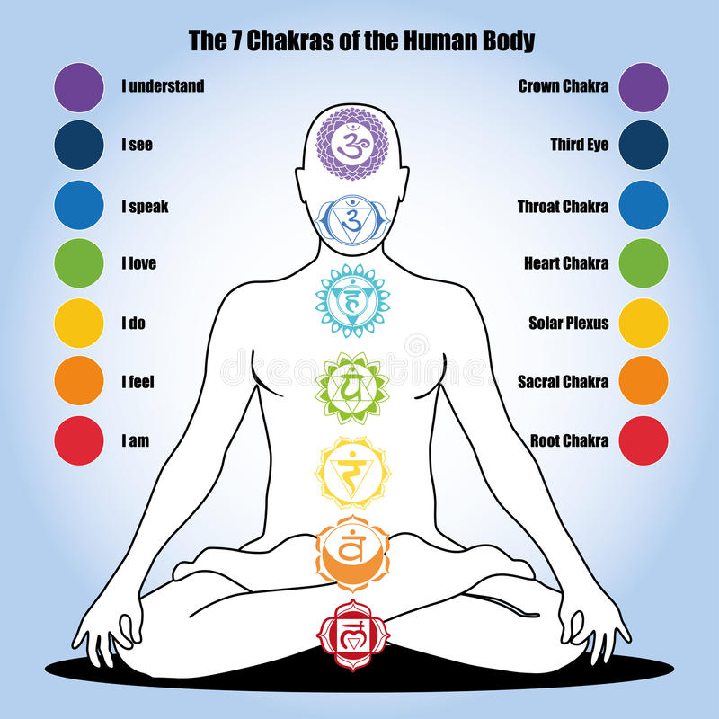 7 chakras del cuerpo humano ilustración del vector