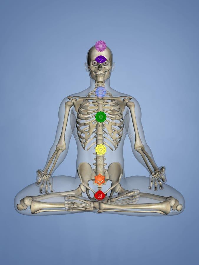 Chakras, modello dell'essere umano 3D illustrazione di stock