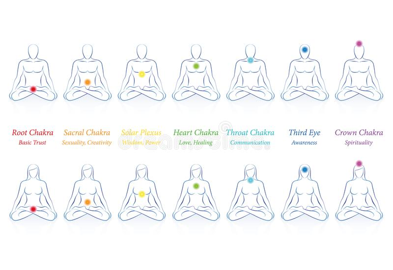 Download Chakras Names Men Women Seven Colors Stock Vector
