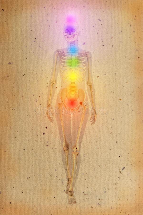 Chakras over a human body. Chakras illustrated over human body with visible skeleton on old parchment stock image