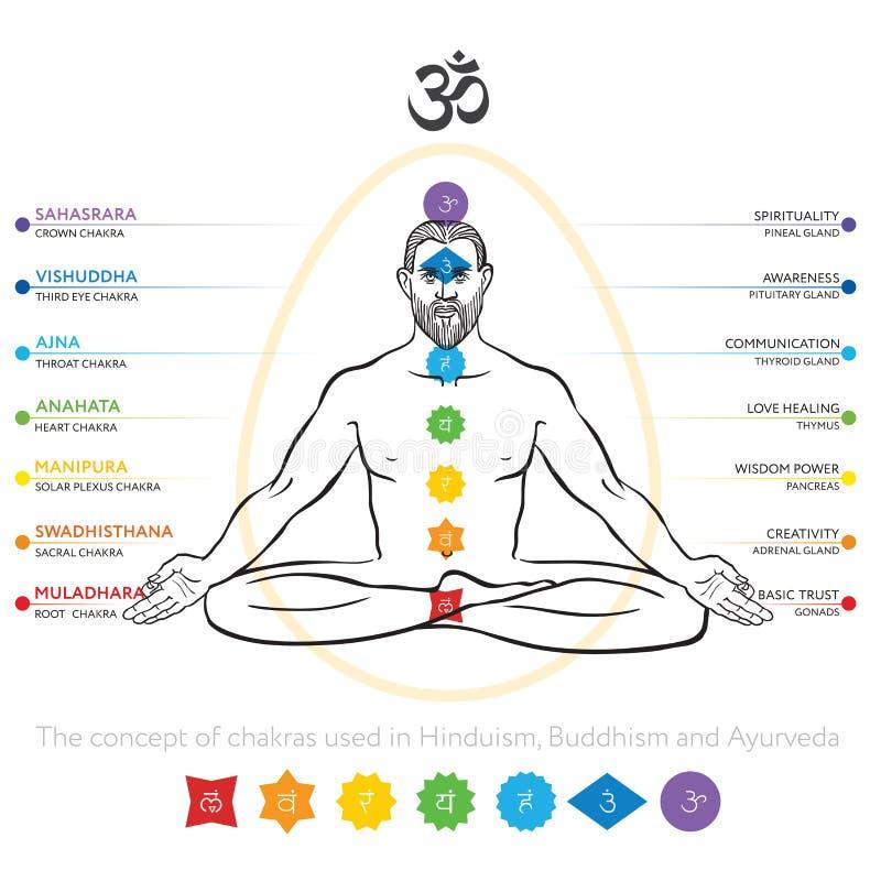 Chakras system av människokroppen - som används i Hinduism, buddism och Ayurveda Man i padmasanaen - lotusblommaasana För design  vektor illustrationer