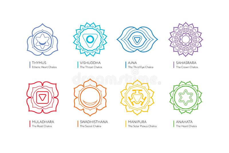 Chakras system of human body - used in Hinduism, Buddhism, yoga and Ayurveda. Chakras system of human body - used in Hinduism, Buddhism and Ayurveda. For design vector illustration