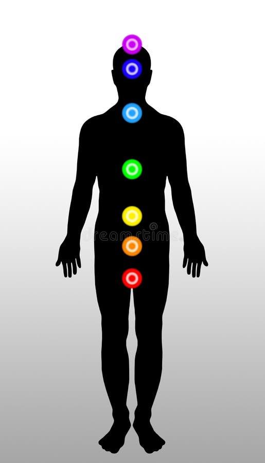 Chakras van het lichaam stock illustratie