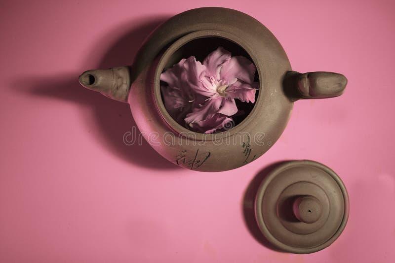 chaleira com flor fotos de stock
