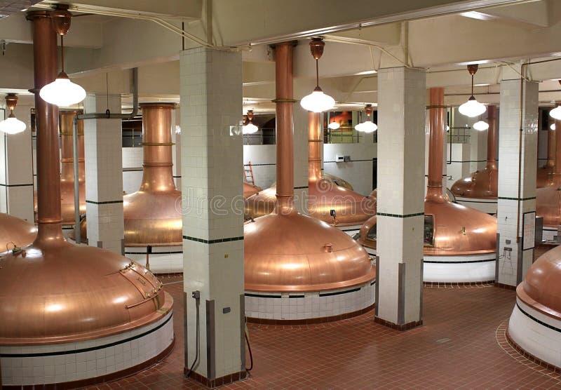 Chaleiras da cerveja na cervejaria imagem de stock royalty free