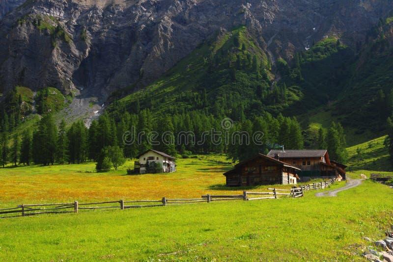 Chalet della montagna in svizzera immagine stock for Disegni di chalet svizzeri