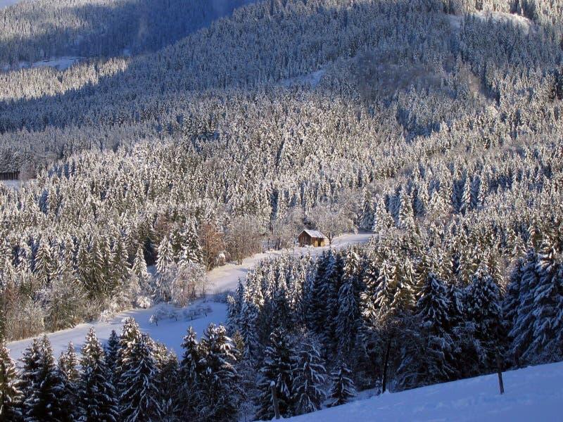 Chalet en la nieve foto de archivo libre de regalías