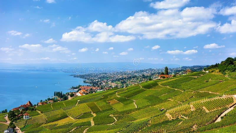 Chalet nära den Lavaux vingårdterrassen som fotvandrar slingan Schweiz arkivfoto