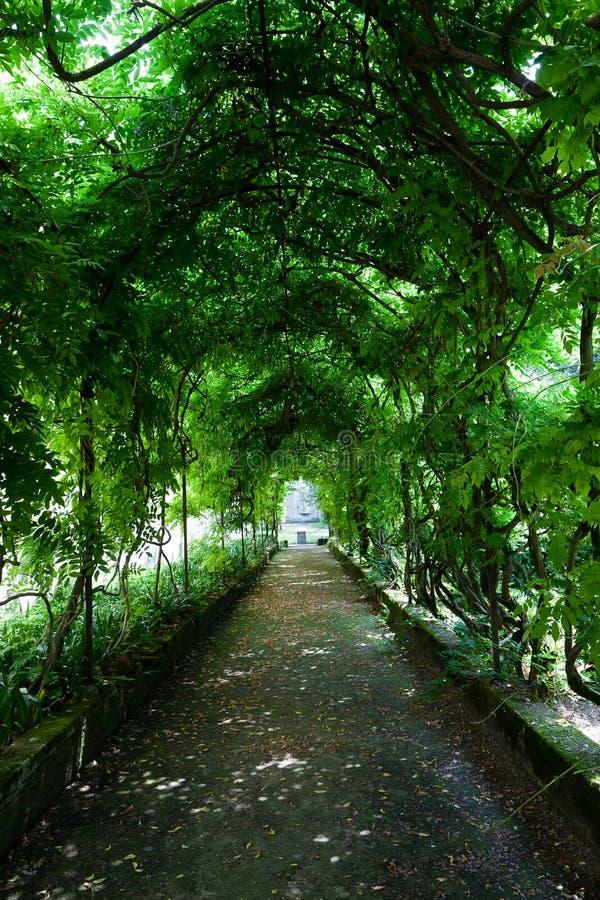 Chalet Pisani, Stra, Véneto, Italia del parque de la sombra de la galería del árbol fotografía de archivo libre de regalías