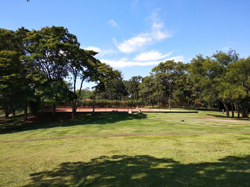 Chalet rustique dans un Forest Park avec de beaux arbres photo stock