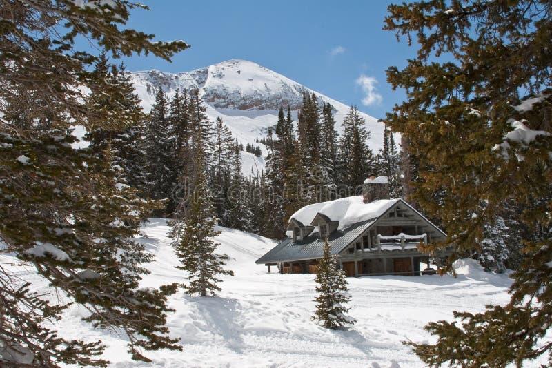 chaleten skidar arkivbilder