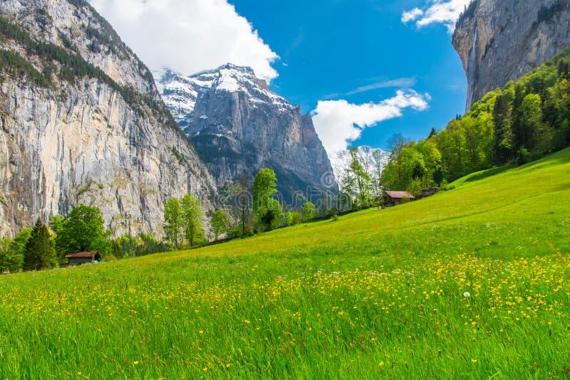 Chalets on green mountain slope. Swiss Alps. Lauterbrunnen, Switzerland, Europe. Chalets on green mountain slope. Swiss Alps landscape. Lauterbrunnen stock photos
