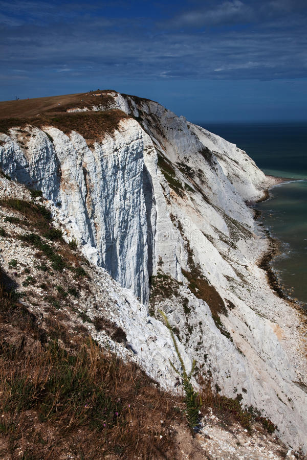 Chalk Cliffs Stock Images