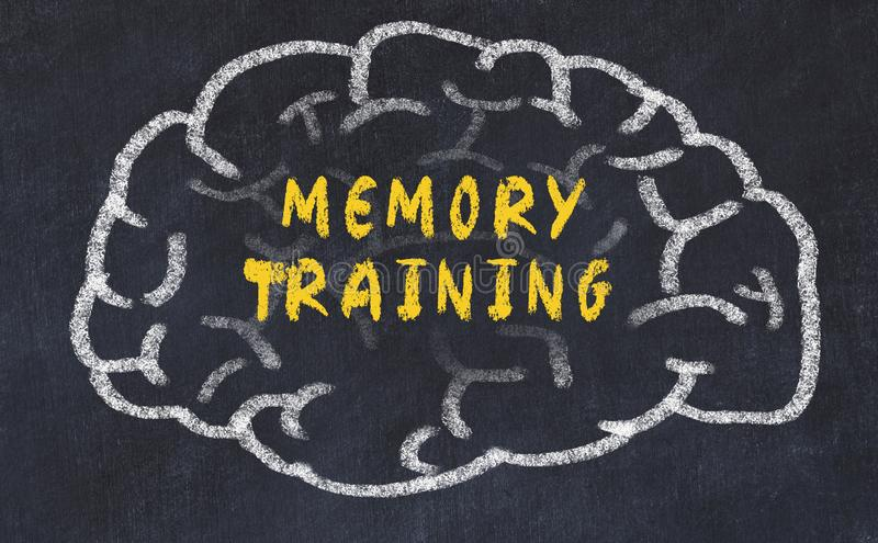 Chalk drawing of human brain with inscription memory training stock photo