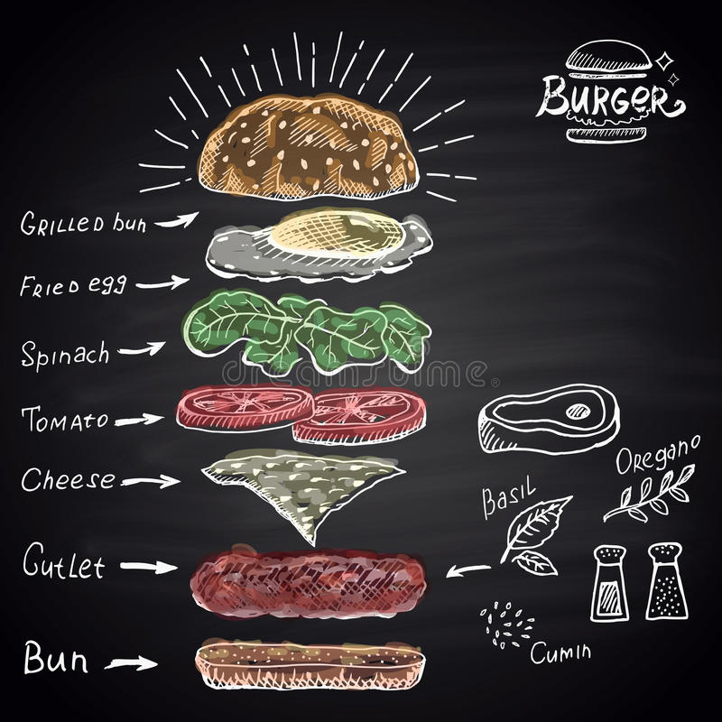 Chalk drawn colored components of burger with text. vector illustration