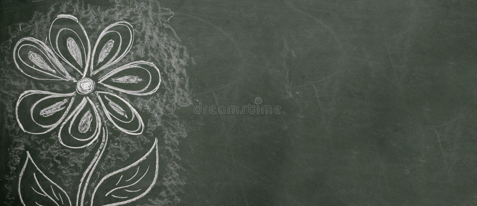 Download Chalkboard Drawing stock photo. Image of elementary, sketch - 118642