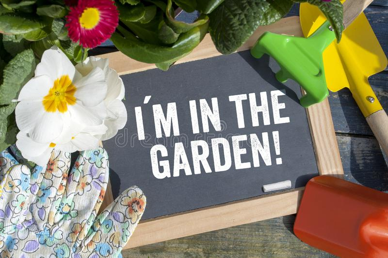 Chalkboard with plants and equipment. With i am in the garden stock photo