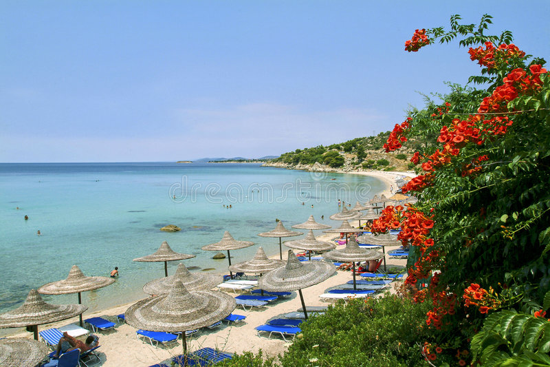 Chalkidiki beach with bughenvilla plant royalty free stock photos