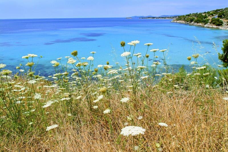 Chalkidiki-Landschaft stockfotos