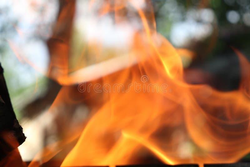 Chama alaranjada fascinante de um fogo - o elemento em que você pode olhar para sempre fotos de stock royalty free
