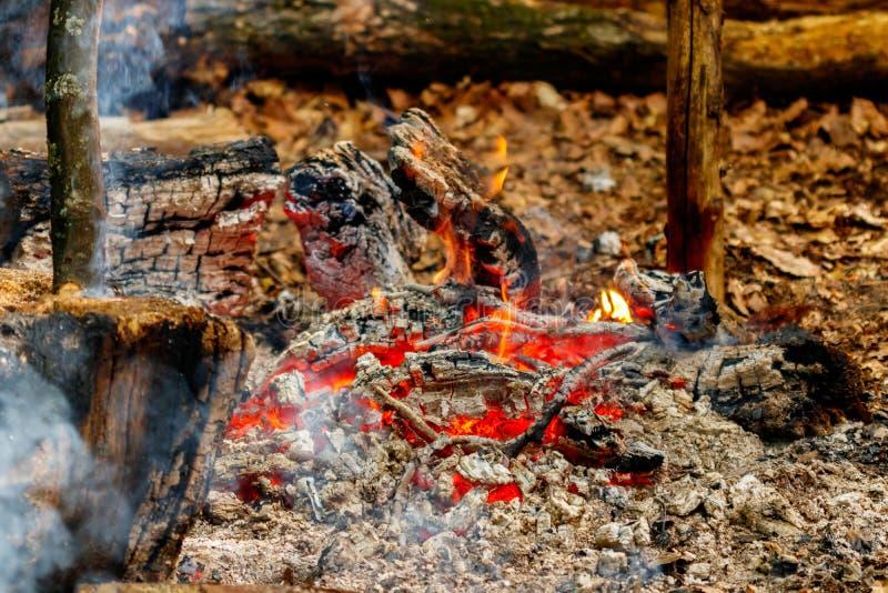 Chama da textura dos logs ardentes na noite imagens de stock royalty free