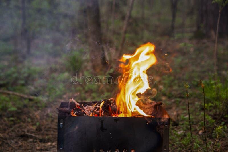 Chama de um fogo em um assado em uma floresta verde fotografia de stock