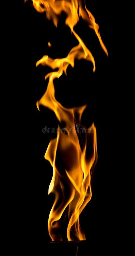 Chama do fogo em um fundo preto foto de stock royalty free