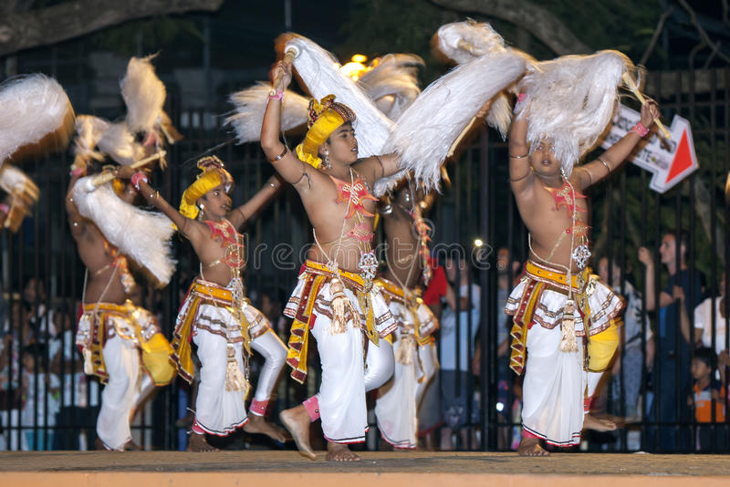 Chamara Dancers perform a dance whereby the yak tails they hold symbolically fan the Sacred Tooth Relic during the Esala Perahara. Kandy, Sri Lanka. The Esala royalty free stock photo