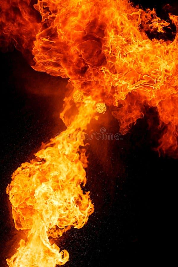 Chamas do fogo, isoladas no fundo preto fotografia de stock royalty free