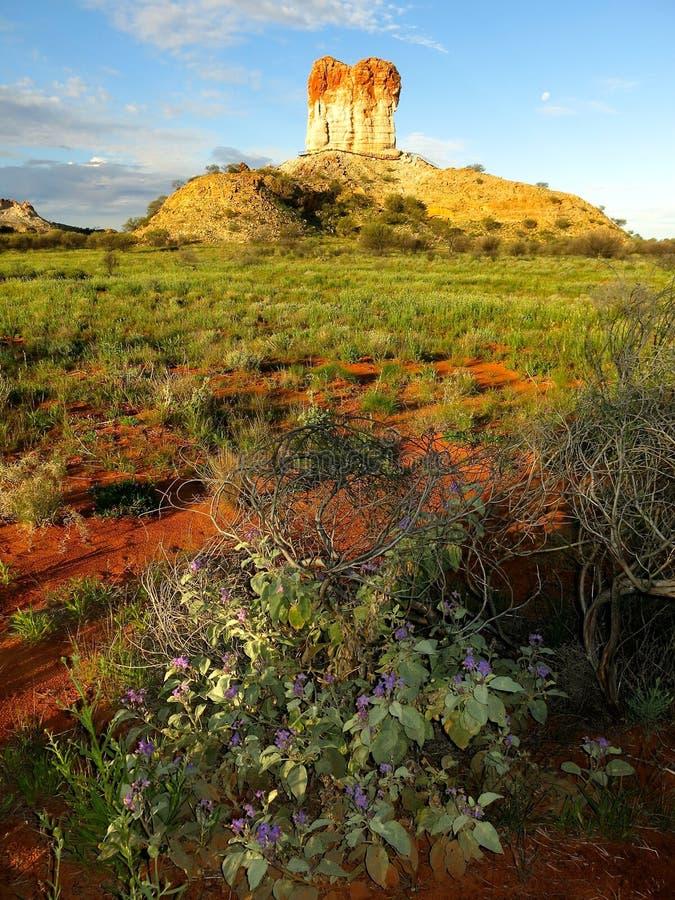 Chambers Pillar, Nothern Territory, Australia. Beautiful Chambers Pillar, Nothern Territory, Australia stock images