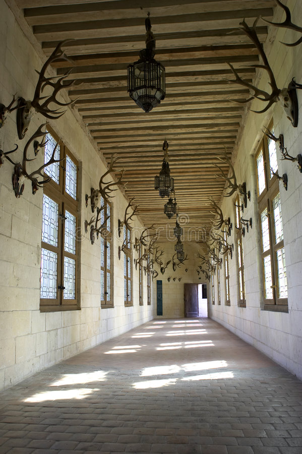 chambord korytarz zamku de France obnaża poluje Loire valley trophys obrazy stock