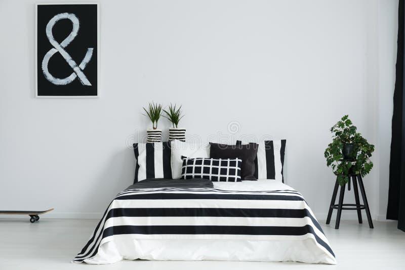 Chambre à coucher avec les usines et la planche à roulettes photographie stock